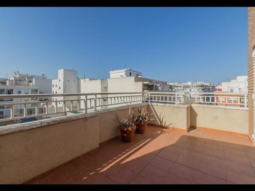 Costa Blanca South / Torrevieja / Torrevieja / In town  / Resales / Apartment